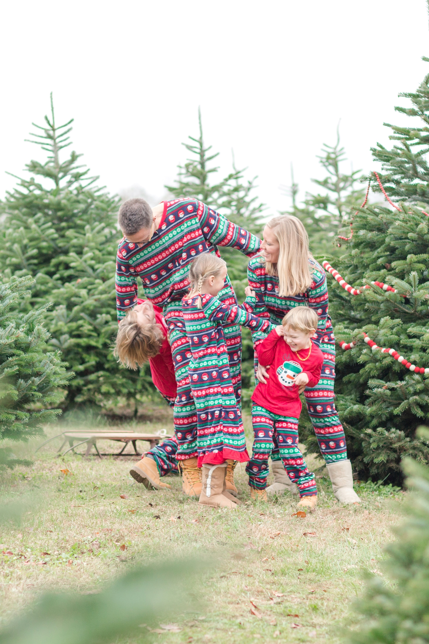 Golembiesky Family 2017-193_ruhl-tree-farm-baltimore-maryland-family-photography-anna-grace-photography-photo.jpg