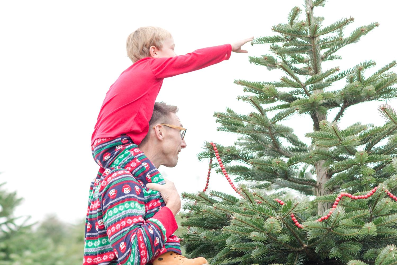 Golembiesky Family 2017-206_ruhl-tree-farm-baltimore-maryland-family-photography-anna-grace-photography-photo.jpg
