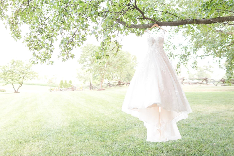 COWAN WEDDING HIGHLIGHTS-39_maryland-and-virginia-wedding-photographer-anna-grace-photography-photo.jpg