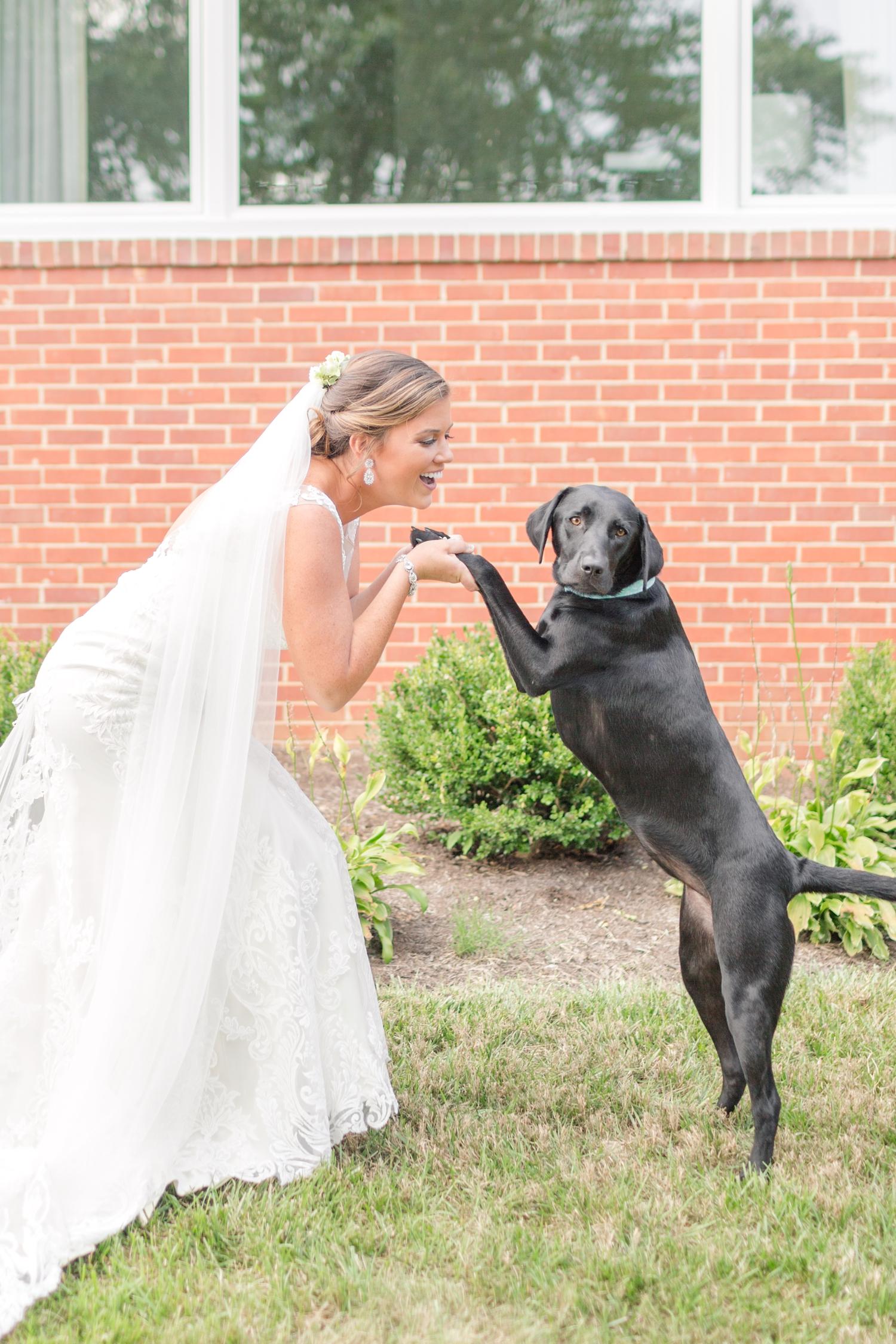 WEBSTER WEDDING HIGHLIGHTS-168_maryland-and-virginia-wedding-photographer-anna-grace-photography-photo.jpg