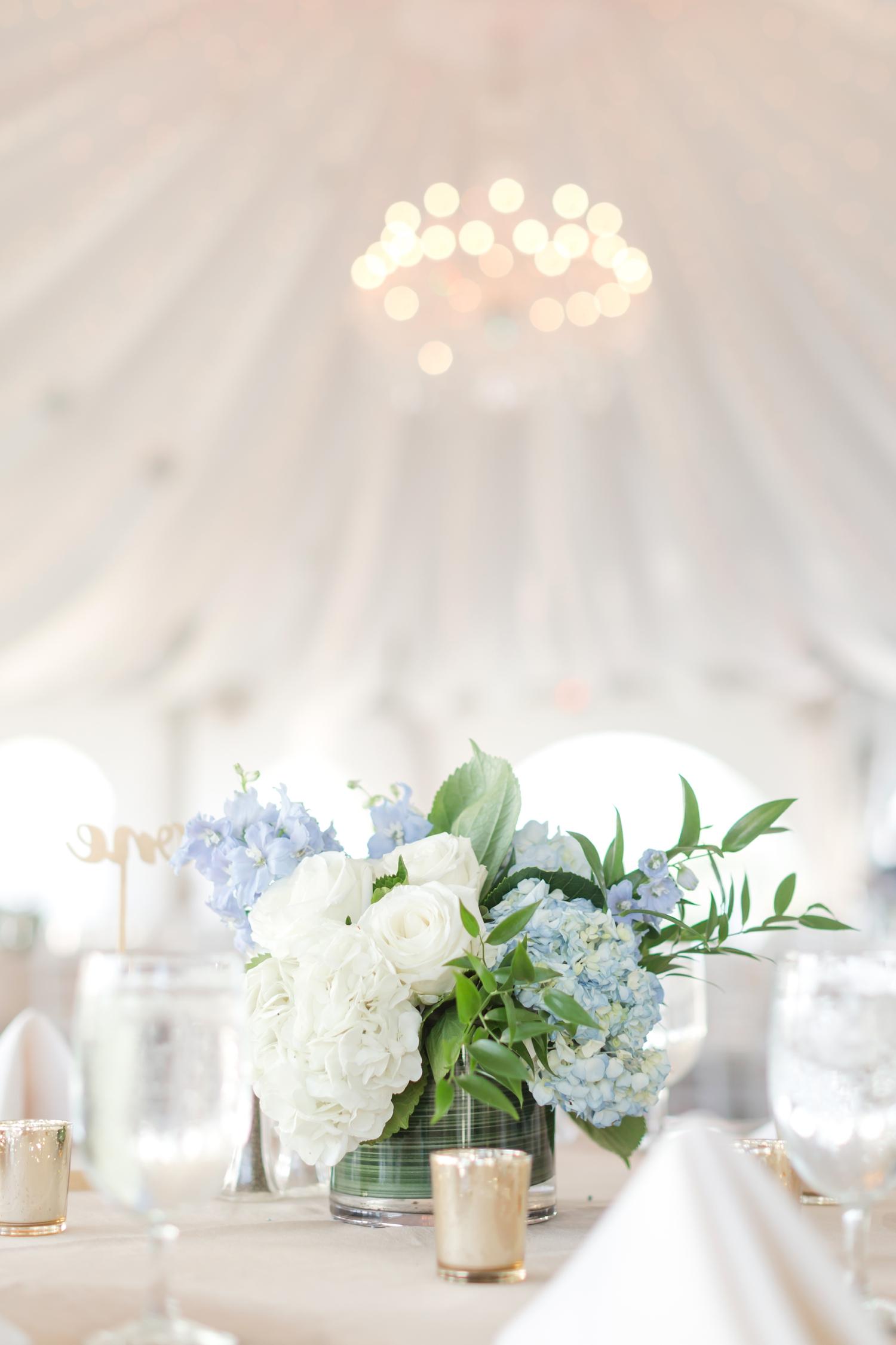 SCOTT WEDDING HIGHLIGHTS-45_maryland-and-virginia-wedding-photographer-anna-grace-photography-photo.jpg