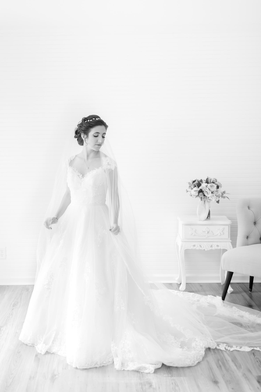 Bertrand WEDDING HIGHLIGHTS-95_maryland-virginia-louisiana-wedding-photographer-grand-marais-wedding-anna-grace-photography-photo.jpg