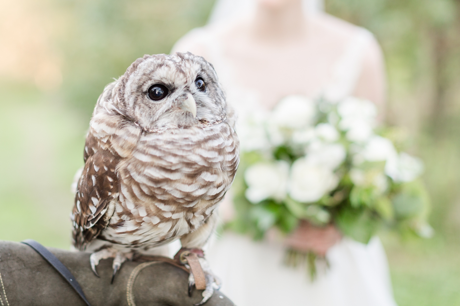 They had to get a few photos with the owl that was on site that day!