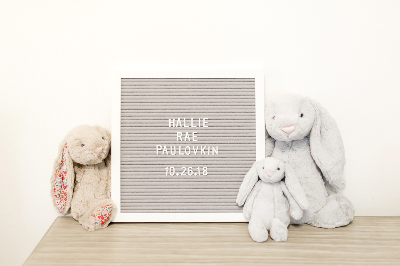 Hallie Newborn-32_Maryland-newborn-Family-photographer-anna-grace-photography-photo.jpg
