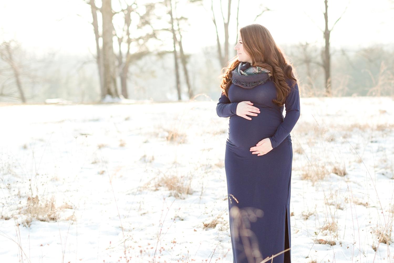 Garbow Maternity-90_Maryland-Maternity-Photographer-Hampton-Historic-Mansion-photographer-anna-grace-photography-photo.jpg