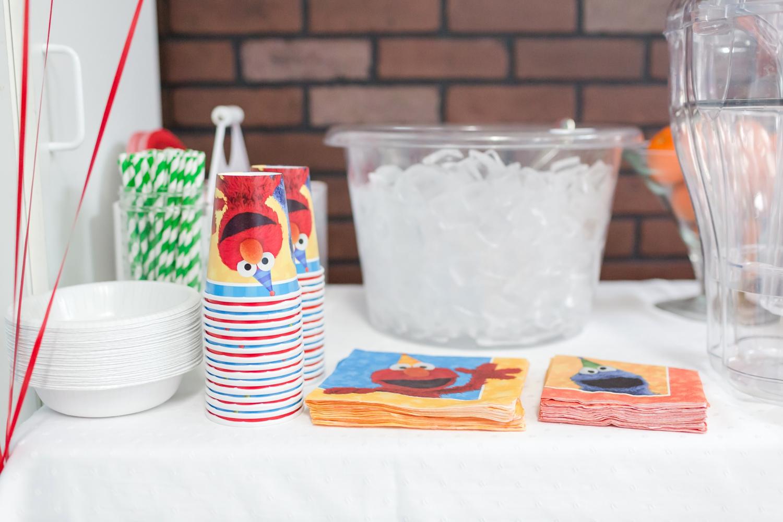 Payton's 2nd Birthday Sesame Street-46_Elmo-Sesame-Street-2nd-Birthday-Party-Maryland-family-photographer-anna-grace-photography-photo.jpg