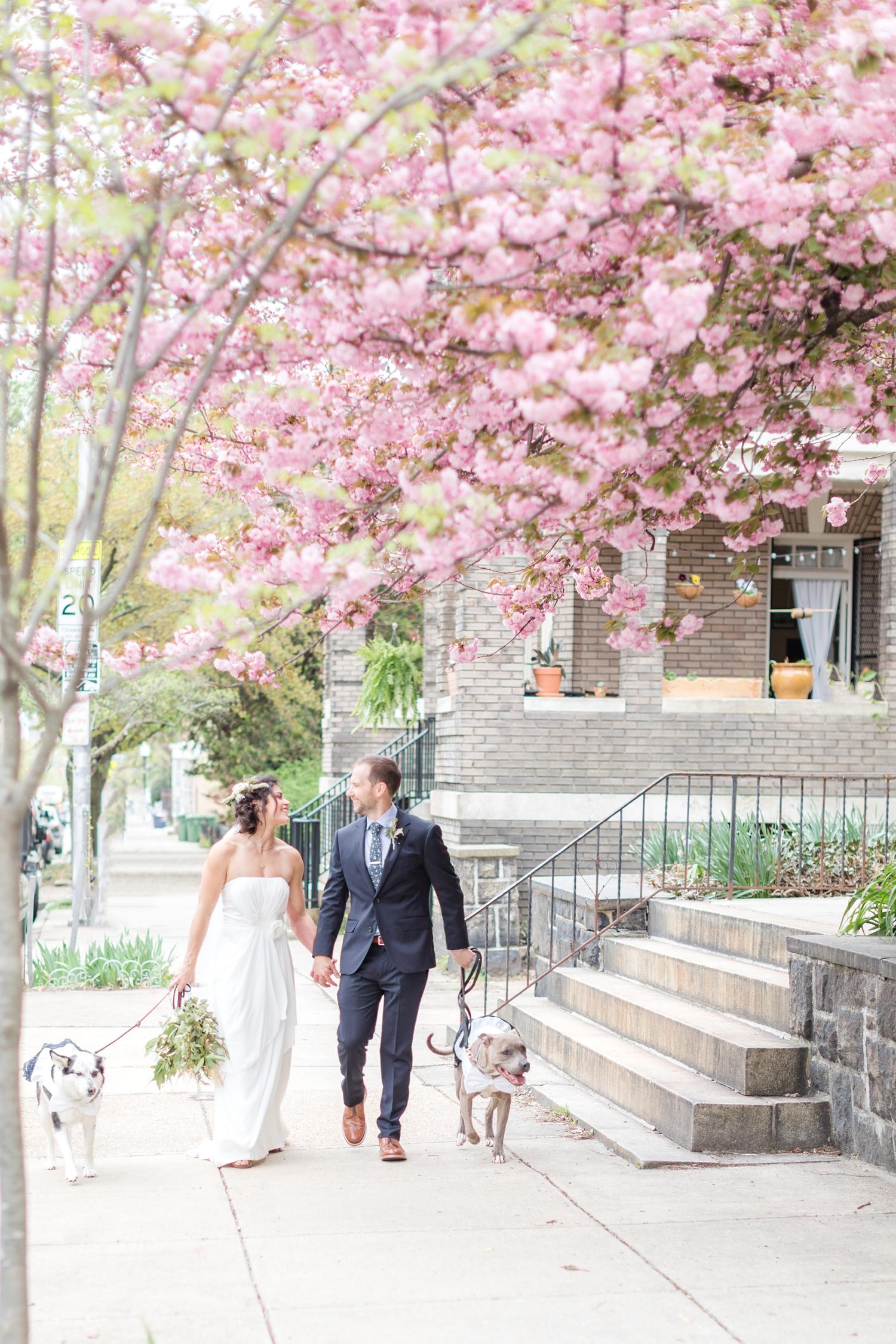 Matt & Angel Skarzynski Wedding WEDDING HIGHLIGHTS-150_2640-Space-wedding-Baltimore-Maryland-wedding-photographer-Patapsco-State-Park-engagement-anna-grace-photography-photo.jpg