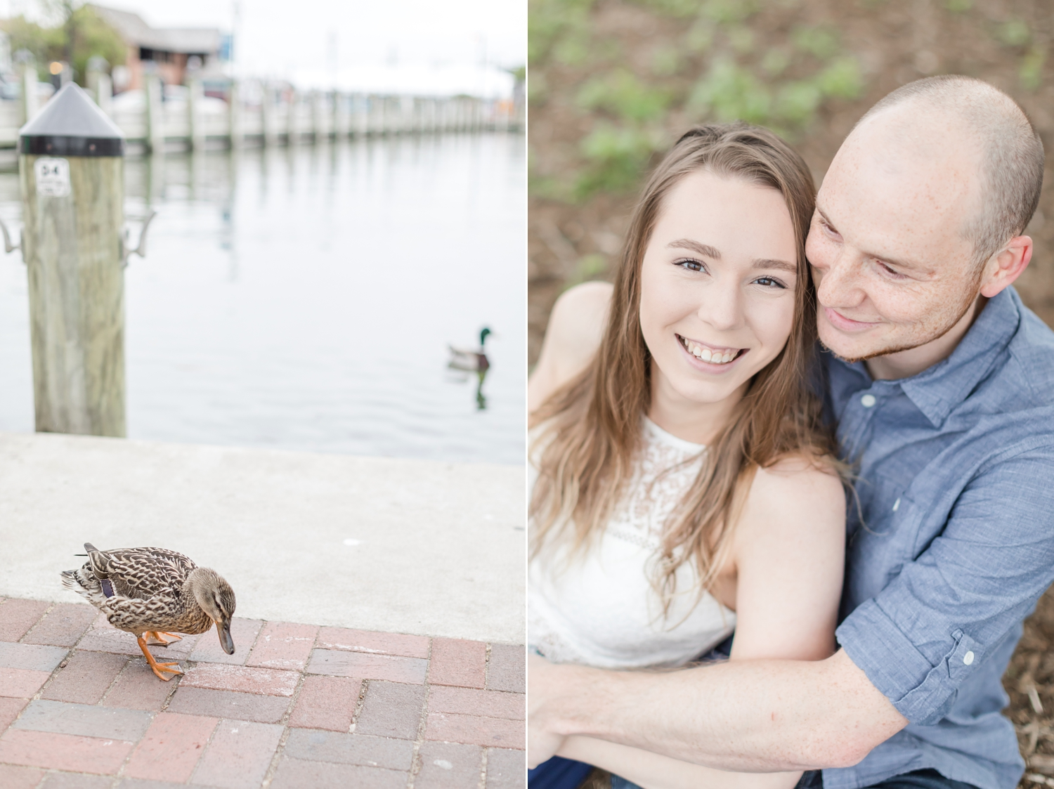 Gina & Steven Engagement-1_Annapolis-engagement-photography-Quiet-Waters-Park-Maryland-engagement-photographer-anna-grace-photography-photo.jpg