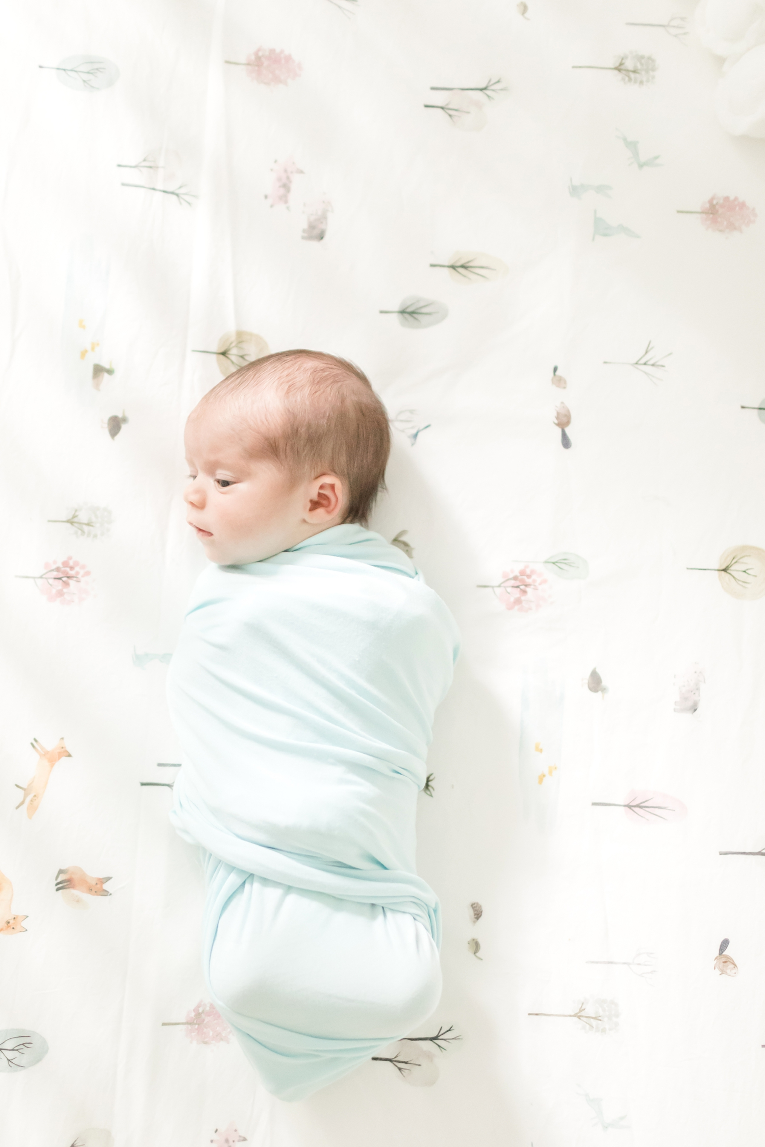 Foster Newborn-75_Maryland-Virginia-Newborn-photographer-anna-grace-photography-photo.jpg