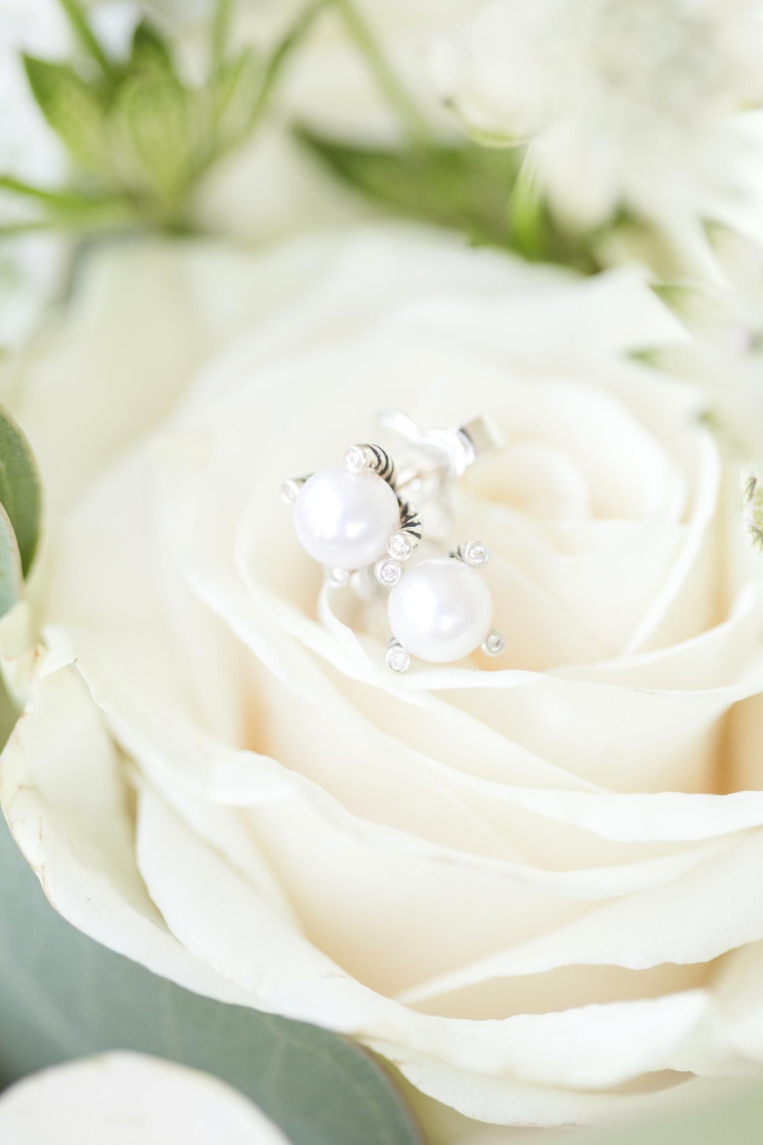 Webb WEDDING HIGHLIGHTS-57_Pond-View-Farm-wedding-Maryland-wedding-photographer-anna-grace-photography-photo.jpg