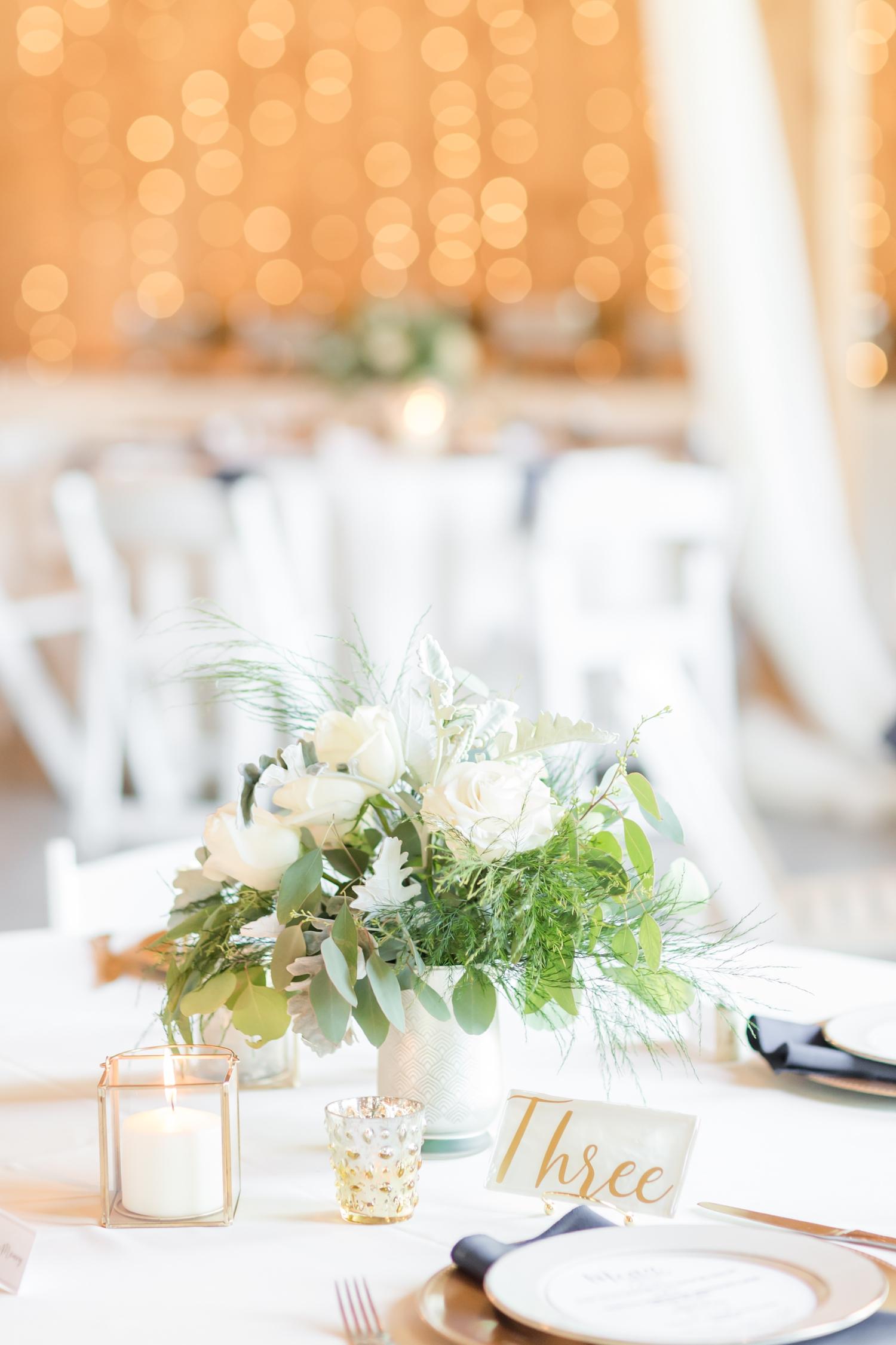 Webb WEDDING HIGHLIGHTS-272_Pond-View-Farm-wedding-Maryland-wedding-photographer-anna-grace-photography-photo.jpg