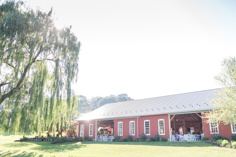 Webb WEDDING HIGHLIGHTS-308_Pond-View-Farm-wedding-Maryland-wedding-photographer-anna-grace-photography-photo.jpg