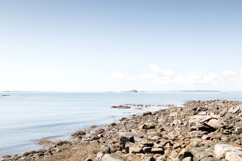 Maine 2019-46_Maine-vacation-maryland-photographer-anna-grace-photography-photo.jpg