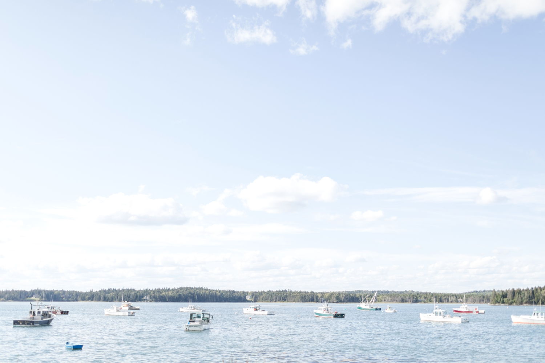 Maine 2019-124_Maine-vacation-maryland-photographer-anna-grace-photography-photo.jpg