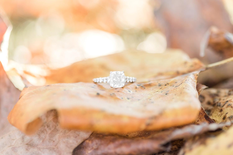 Taylor & Scott Engagement-63_Maryland-engagement-photography-anna-grace-photography-photo.jpg