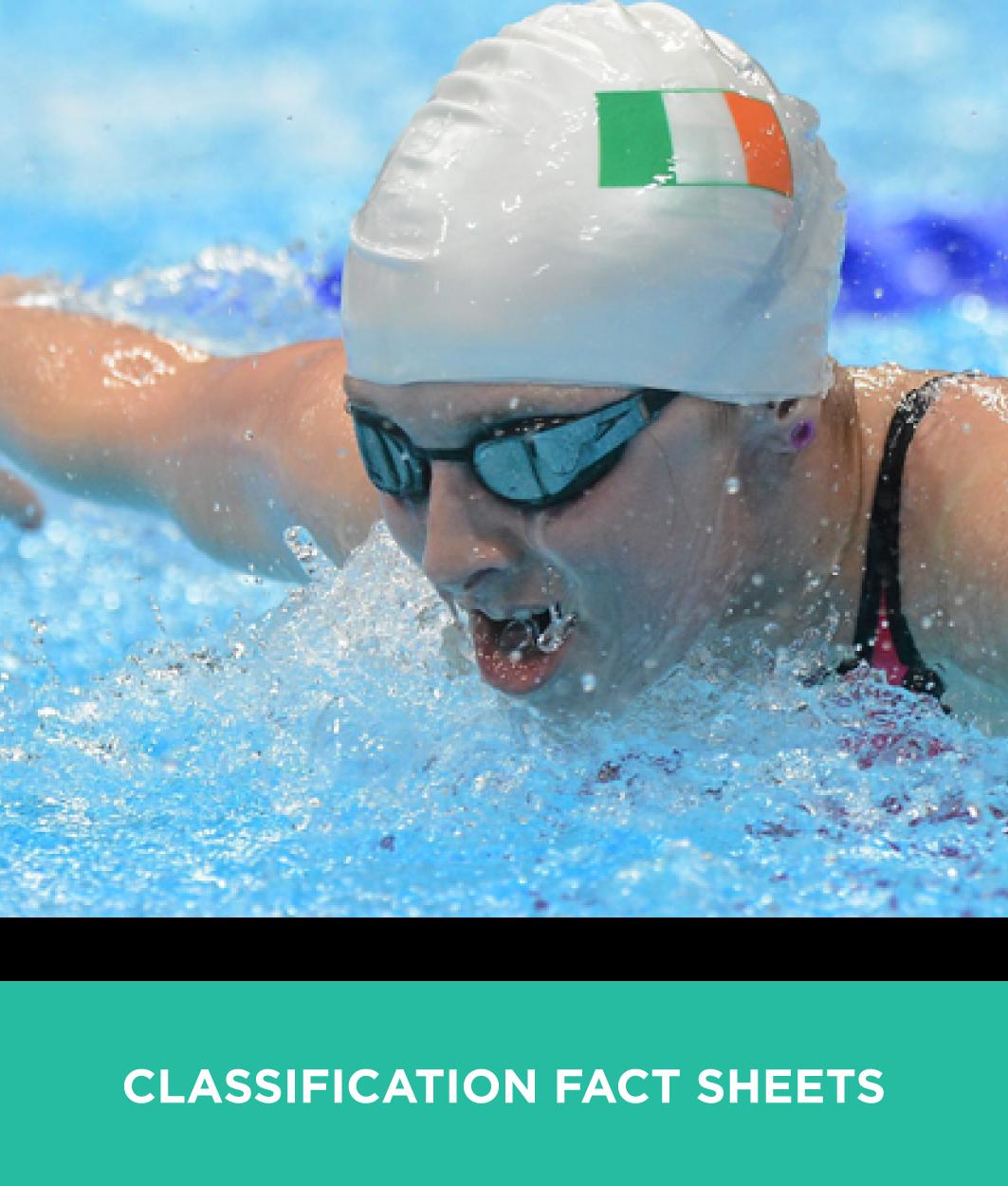 Classification_images_FactSheets.png