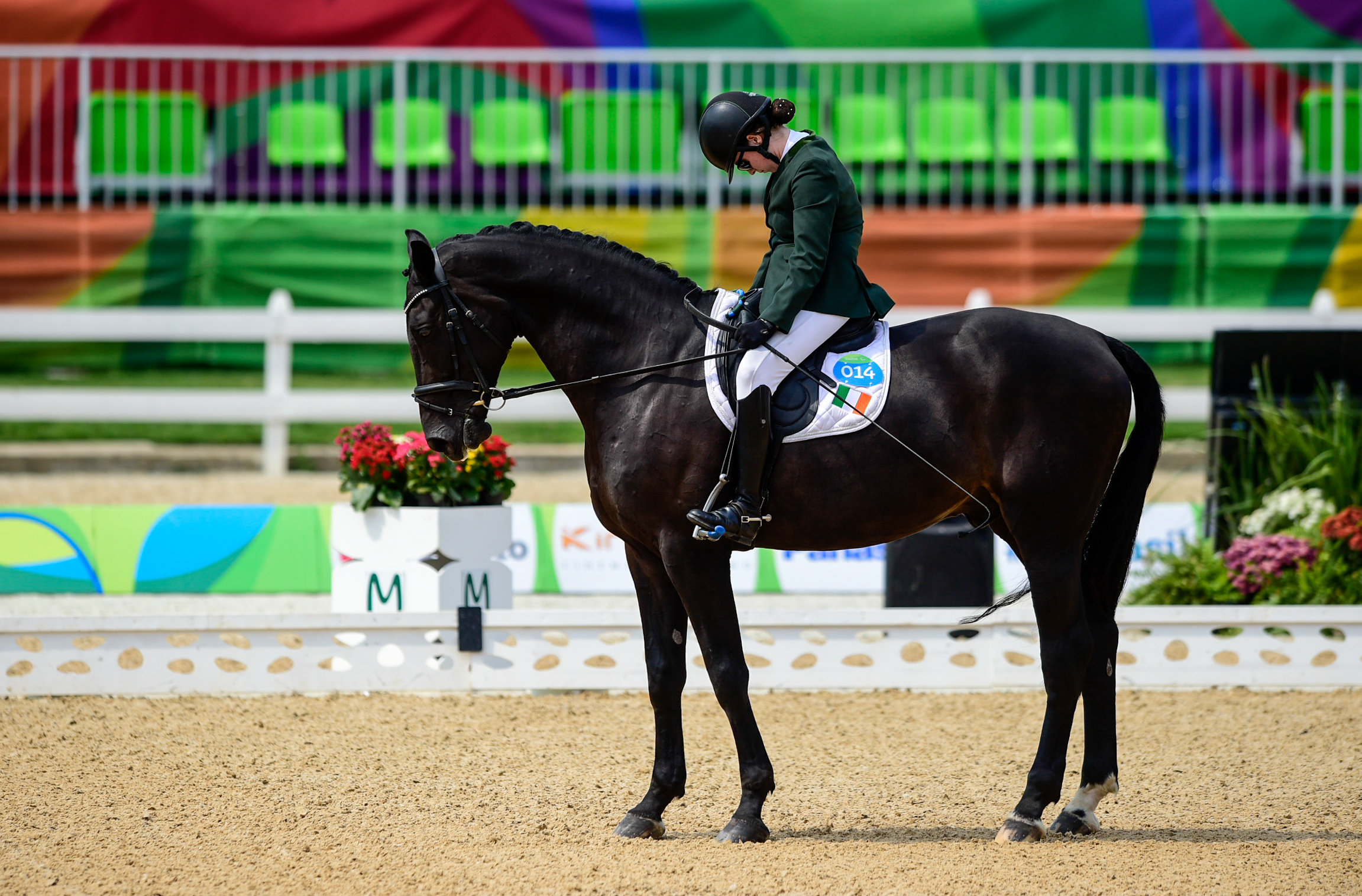Equestrian: Helen Kearney in the Individual Grade 1a