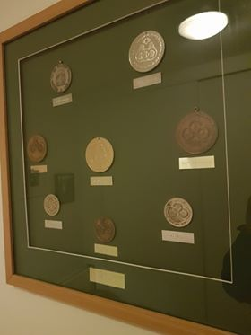 The Paralympic Medals Won by Frances O'Sullivan White
