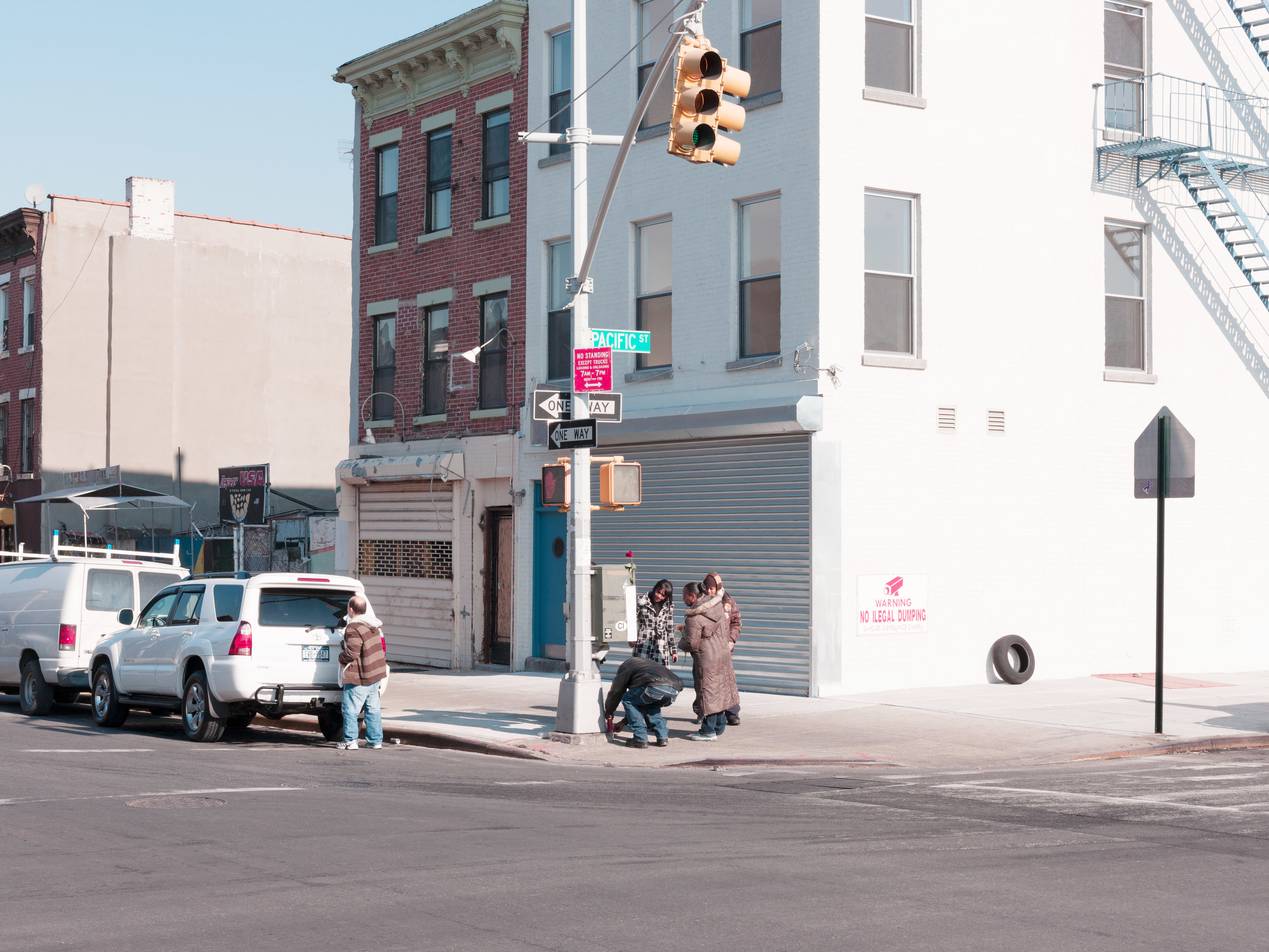 100114_Brooklyn_Landscape_0059.jpg
