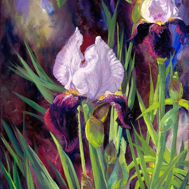 'Beautiful Iris' One of my most asked after  paintings is now in print.  2 sizes available.  Post Free - Link in bio @brendaharrisart . . . . #beautifuliris #irisprint #beardediris #artprints #artprintsforsale  #passioncolourjoy #colourfulartwork #passioncolorjoy #irishart #irishartist #interiordesigninspo #contemporaryartist #colourfulpainting  #interiordesignideas #irishartists  #summercolour #summerart #brendaharrisart  #ihavethisthingwithcolour #colourventures  #irishpainter #acrylicpainting #artvision #artsanity #creative_art #irishgarden