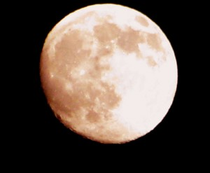 Photo by Rennett Stowe from USA (Pink Moon) [CC BY 2.0 (http://creativecommons.org/licenses/by/2.0)], via Wikimedia Commons
