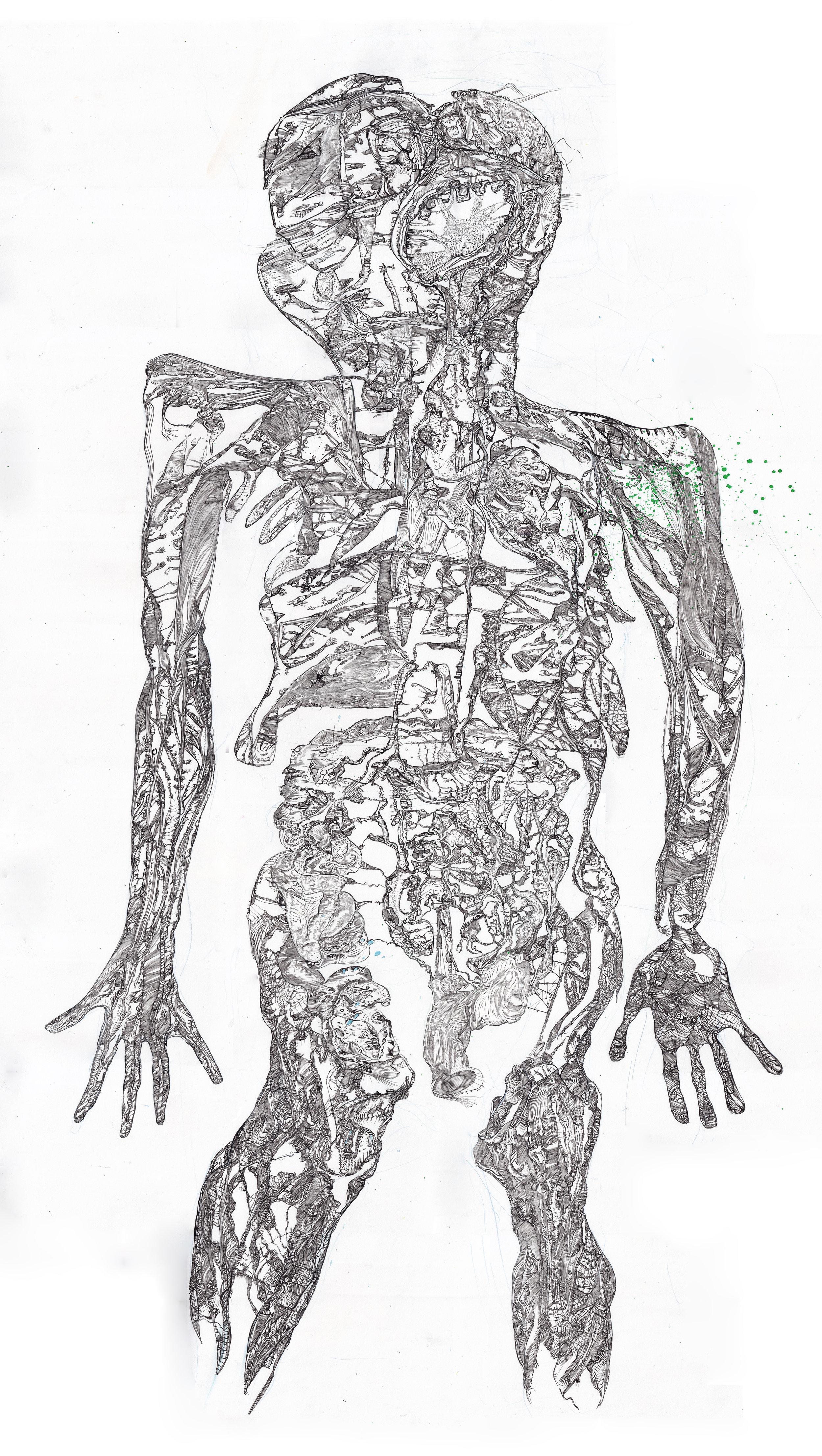 """body""  Pen & Ink on Paper 3.5' x 5' 2016"