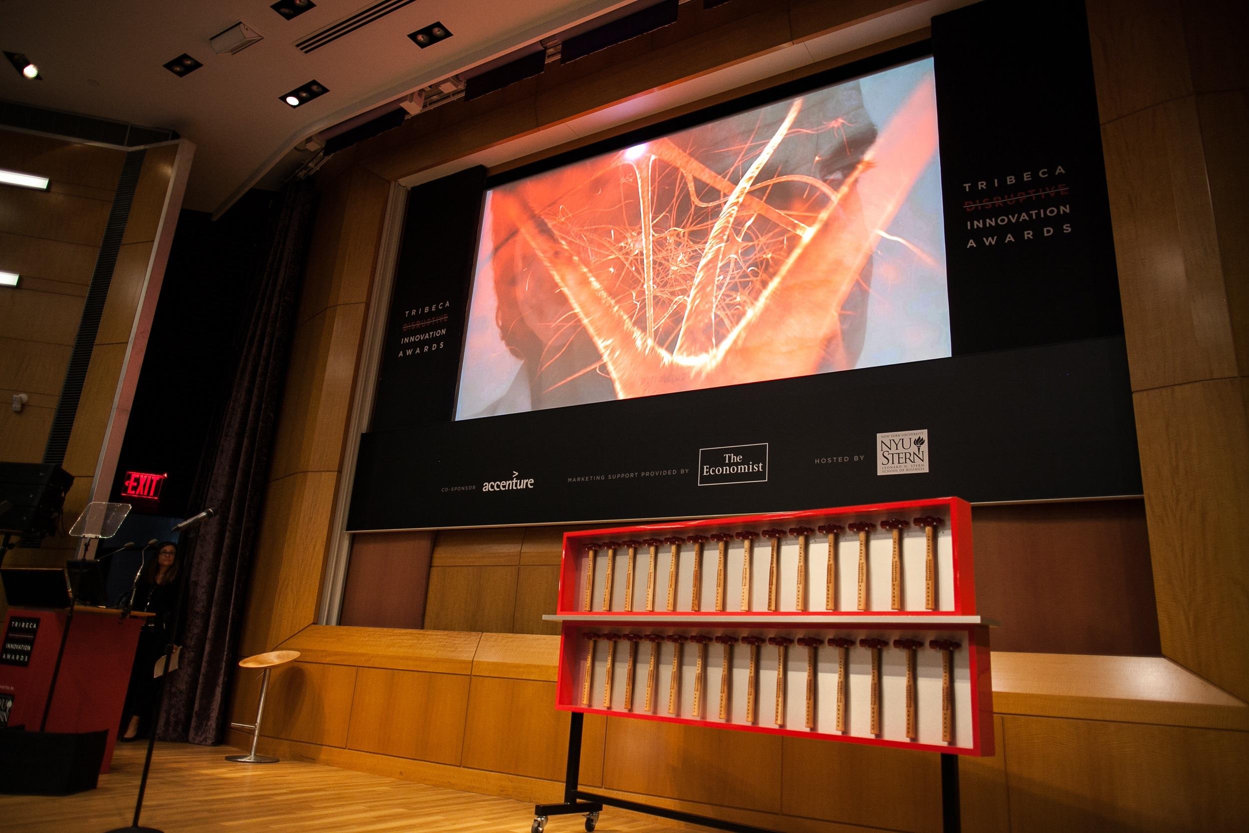 Tribeca Disruptive Innovation Awards 2013 - 034.jpg