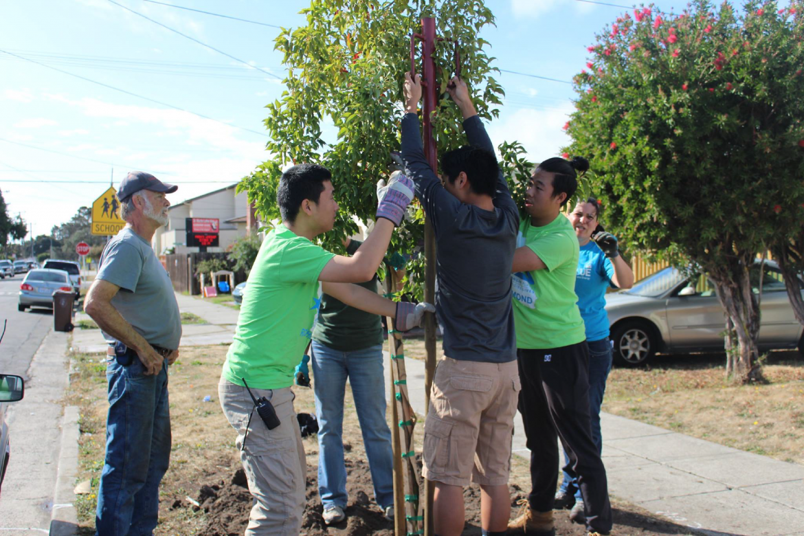 The mission of the Groundwork USA network is to bring about the sustained regeneration, improvement, and management of the physical environment by developing community-based partnerships that empower people, businesses, and organizations to promote environmental, economic, and social well-being.
