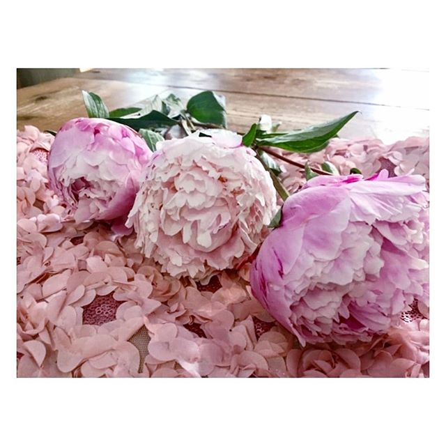 When the fabric meets it's natural inspiration 🌸🌸 Some flowers for your weekend 💗🌸💗