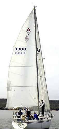 Sails30.jpg
