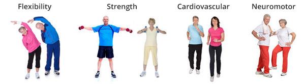 four-components-senior-fitness-training-programs.jpg
