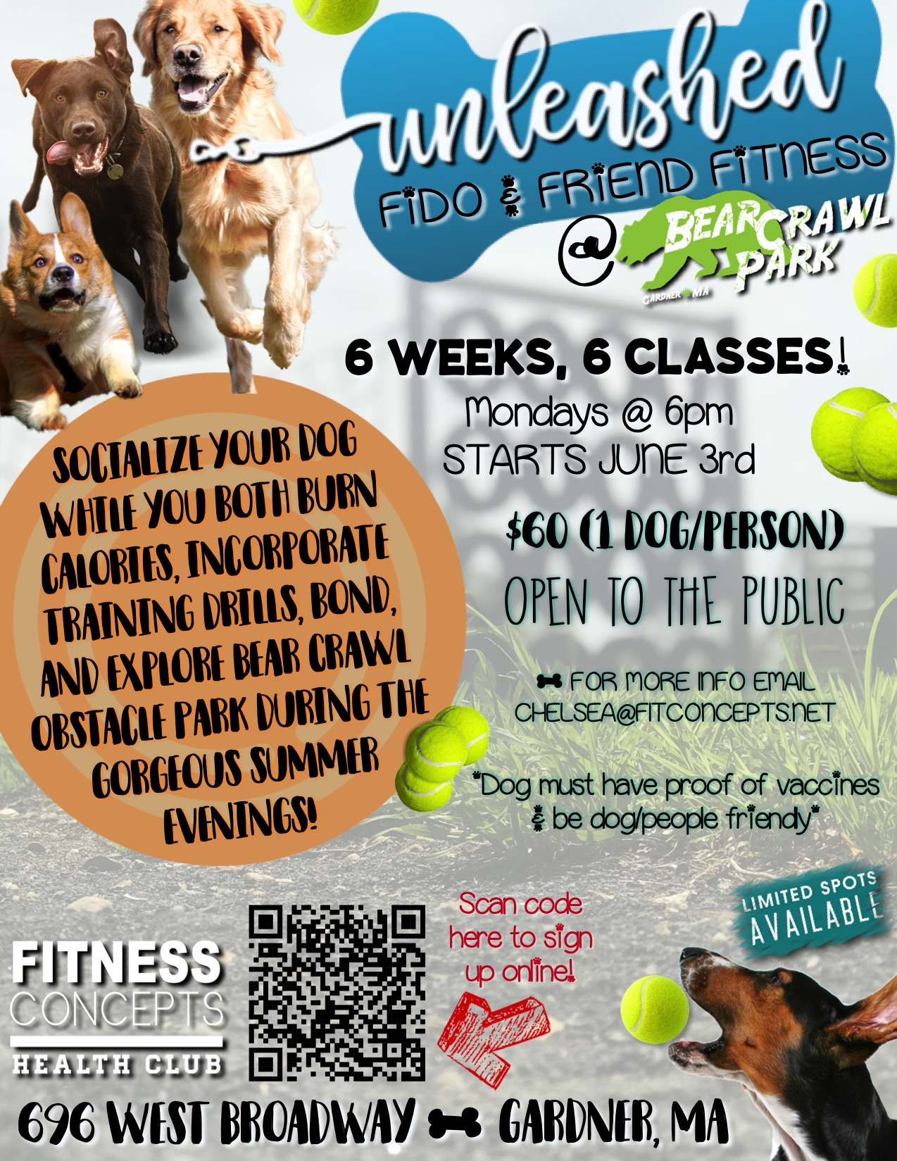 unleashed fido and friend fitness.jpeg
