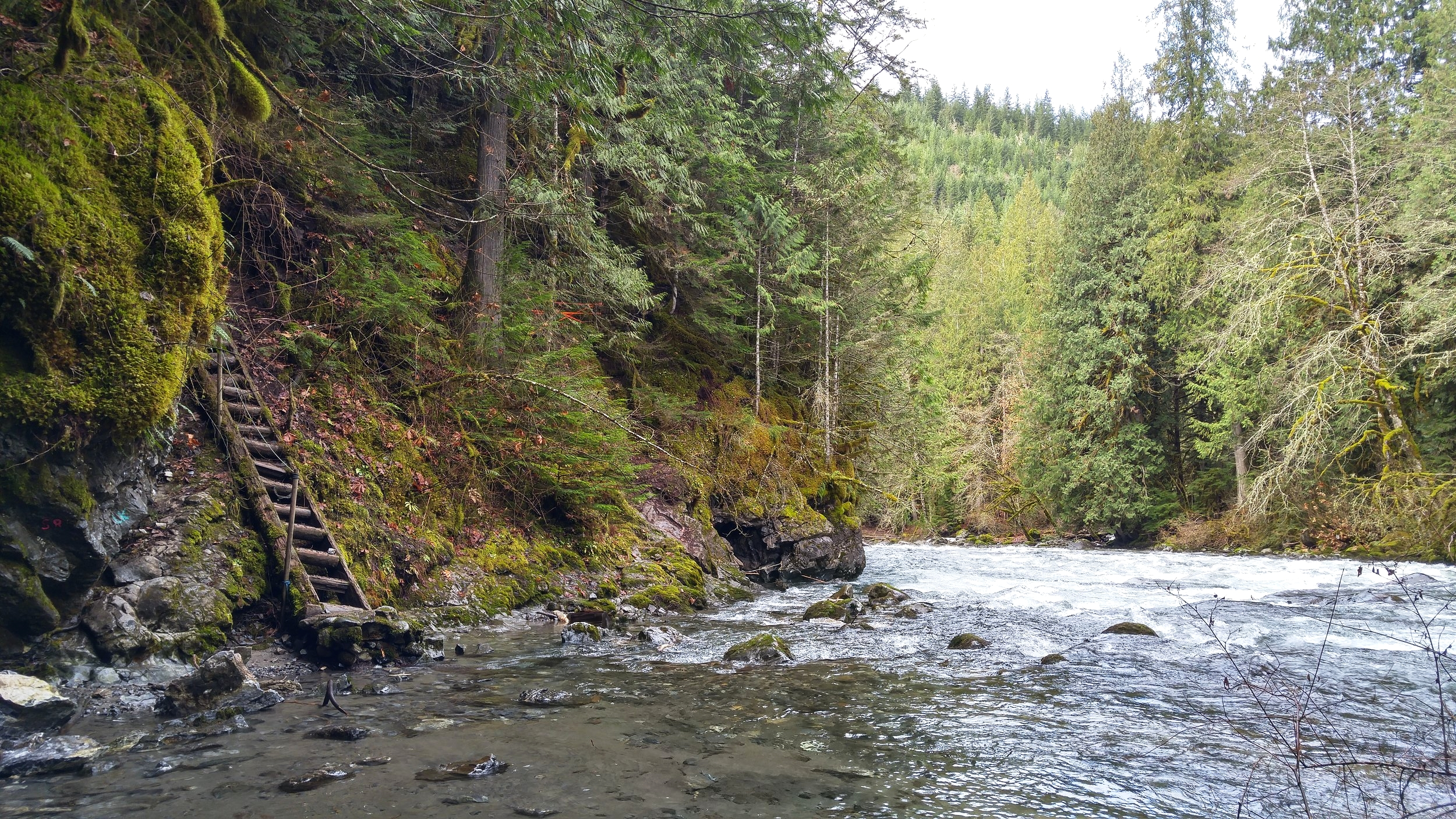 Introducing the Chilliwack River.