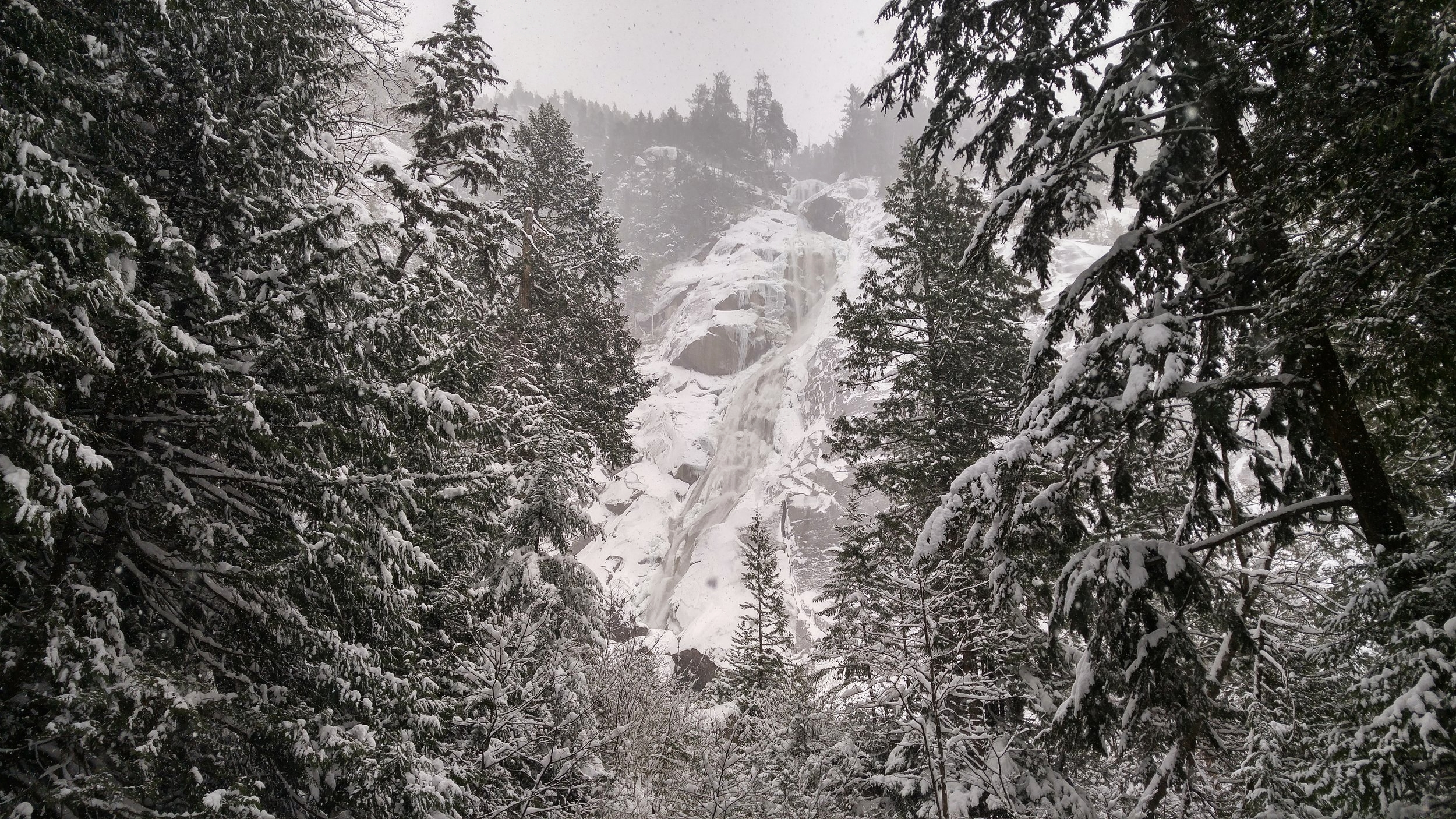 Yet another snowshoe trip brought our club out to Squamish, BC, via the Sea-to-Sky Highway. That day was QUITE the adventure.