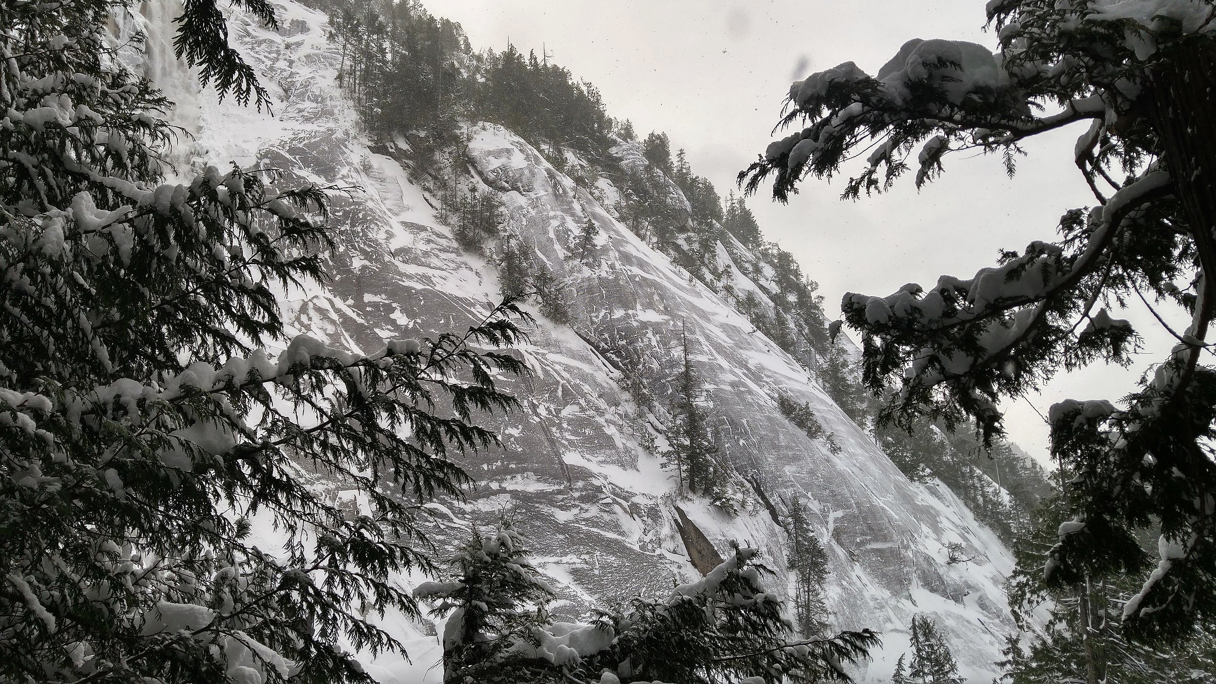 There had been a lot of snow, and the roads to Squamish were terrible. We arrived, hoping to go up the gondola and hike at the top of the mountain, but because of the terrible weather, the gondola was closed.