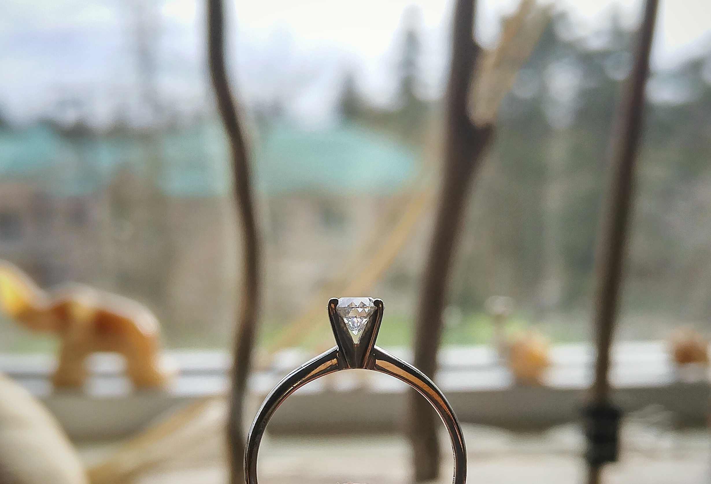 """A wonderful year. And at the end of it all, I had my """"Ring by Spring"""""""