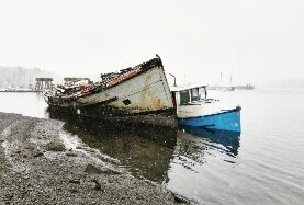 This ship graveyard in Ladysmith makes a quiet and pensive destination for a rainy day.