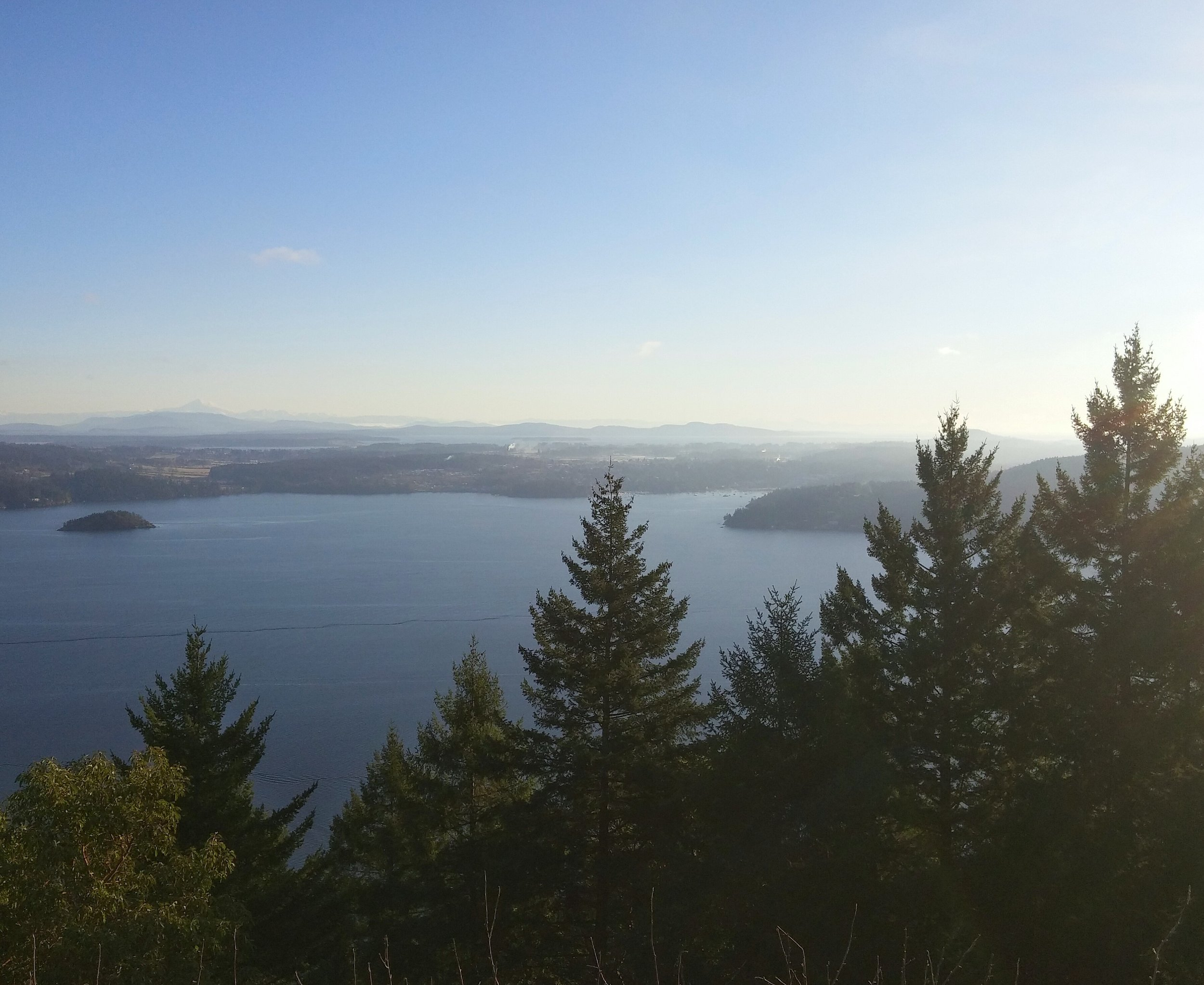 Driving up-Island on the Malahat, you can stop at any lookout point and view all of the Saanich Peninsula and the Bay.