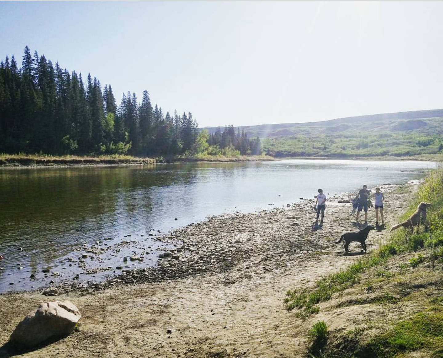 The Red Deer River at Buffalo Jump is a popular hangout for prairie kids. The fishing is good, swimming is warm, the sun is always shining in the summer, and it's the closest thing to an ocean that they have!