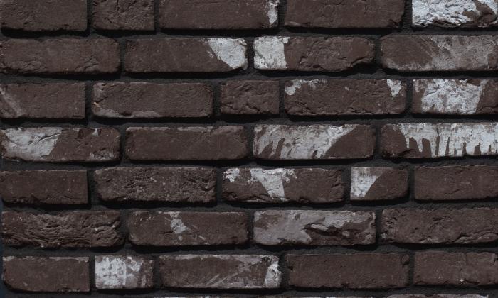 LIMBURGS BRUIN.jpg