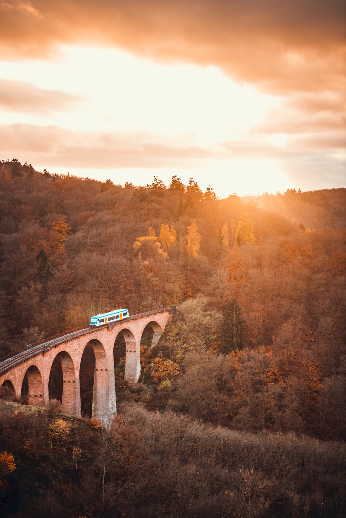 A brick bridge through a forest, with a train on it, at sunset
