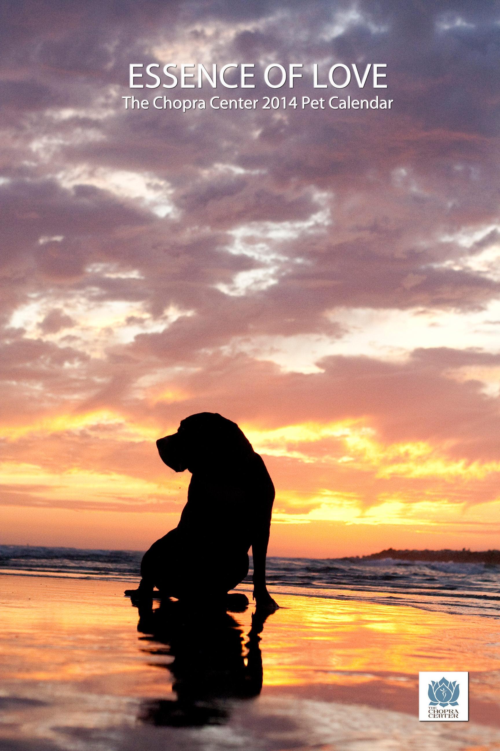 Big Dog Sunset.jpg