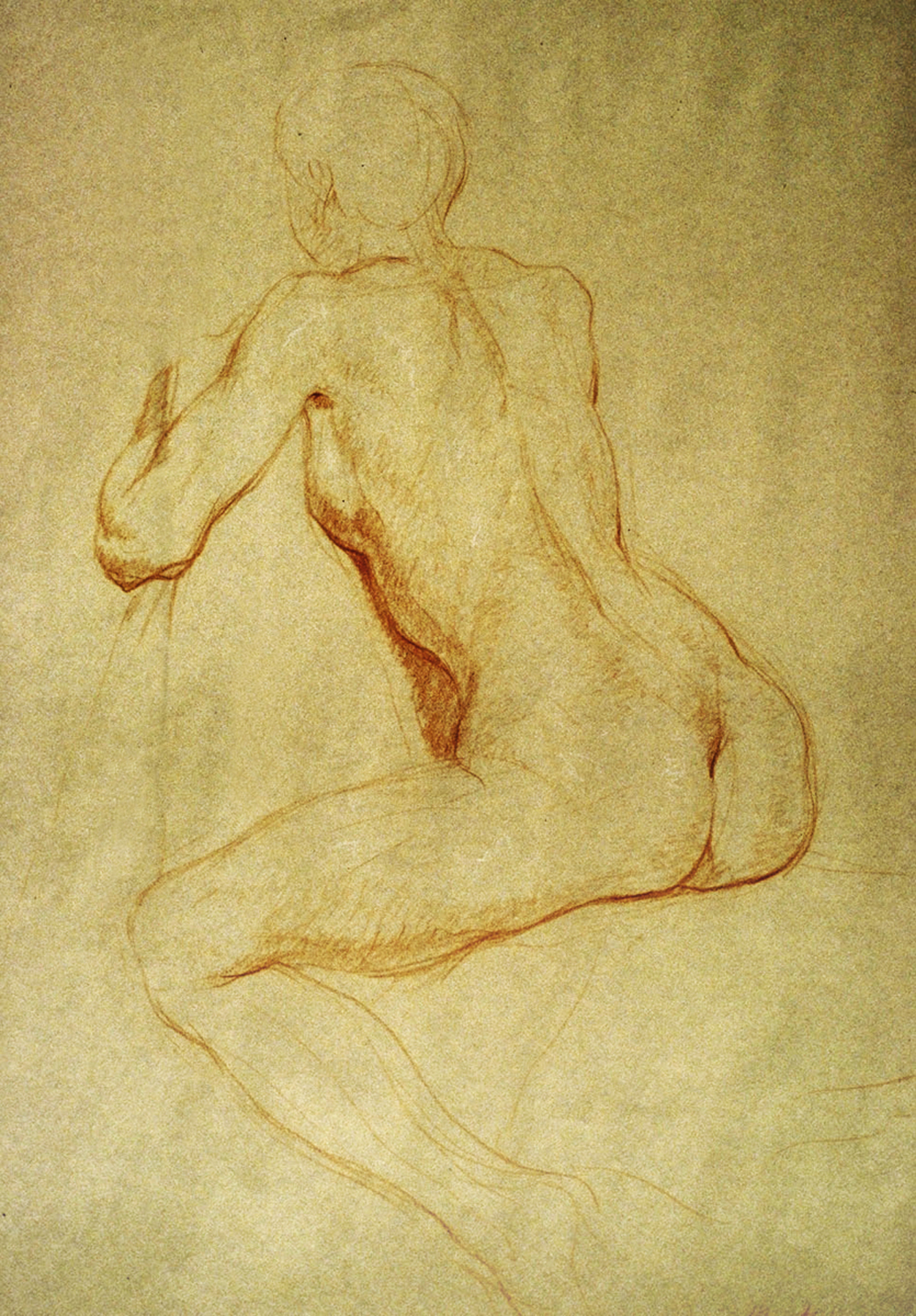 "Seated Female Nude-back view  1991 Red & White Chalk  18""x24"""