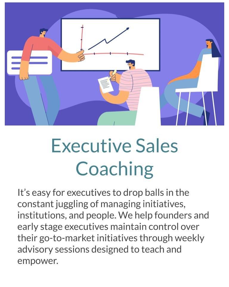 Brown Flag Group Website Exec Coaching.jpg