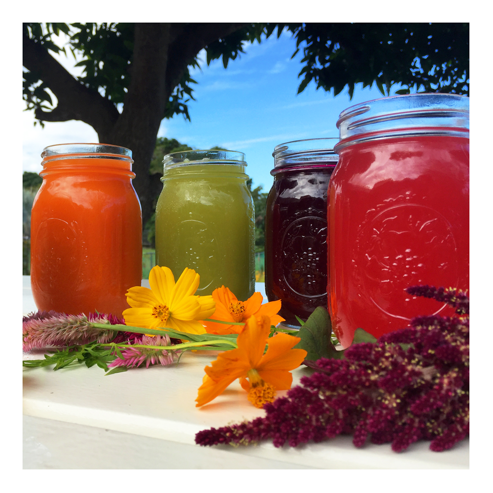 Juices-Rincon-Puerto-Rico-Garden-smoothies-healthy-fresh-coffee-Vegan-Vegetarian-Paleo-Gluten_free-Dairy_free-organic-carta_buena-About_Us.png