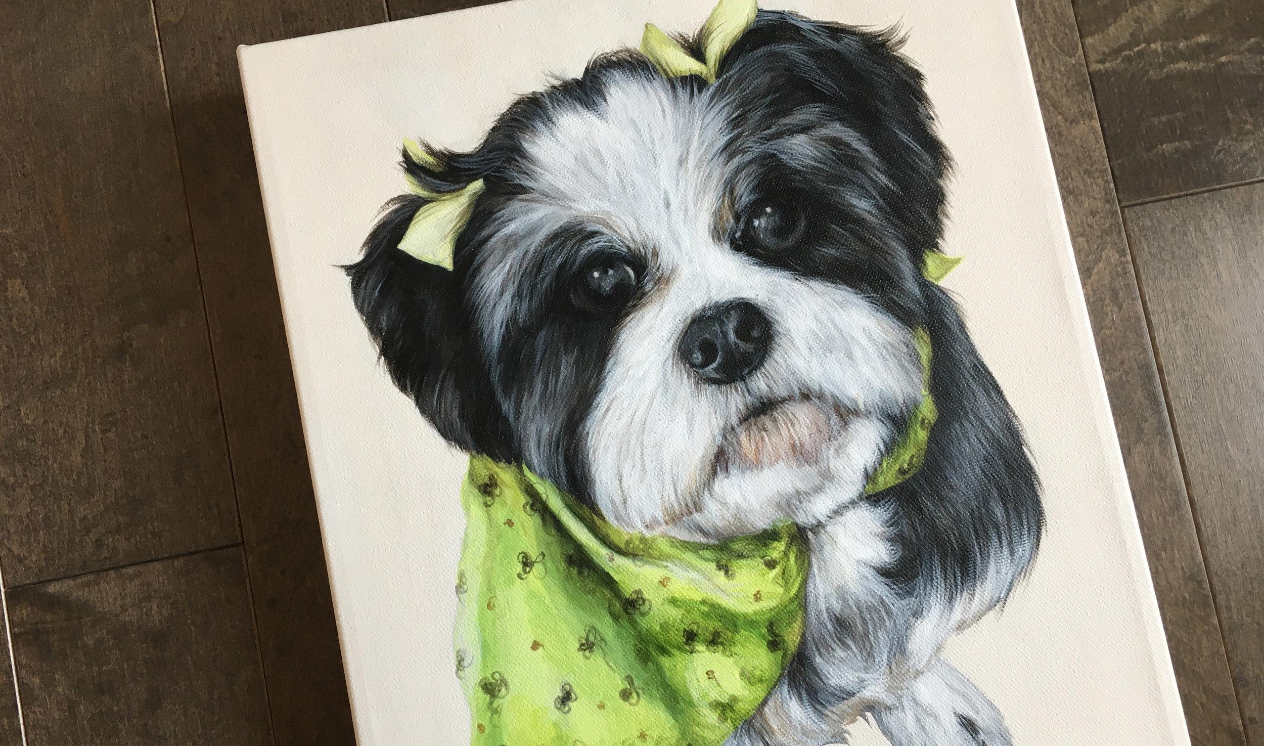 Daisy (Shih Tzu) painting