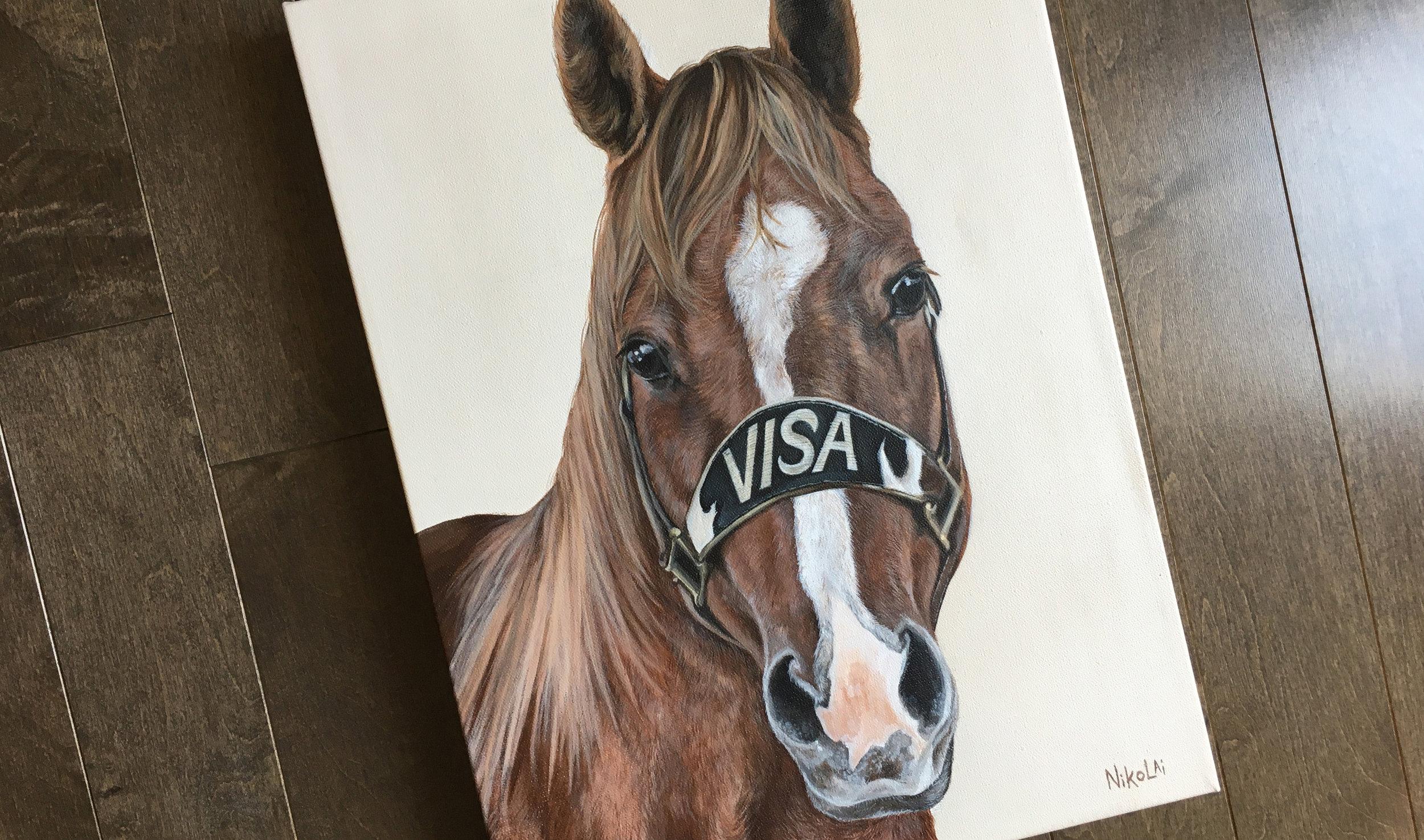 Visa (Quarter Horse) Portrait