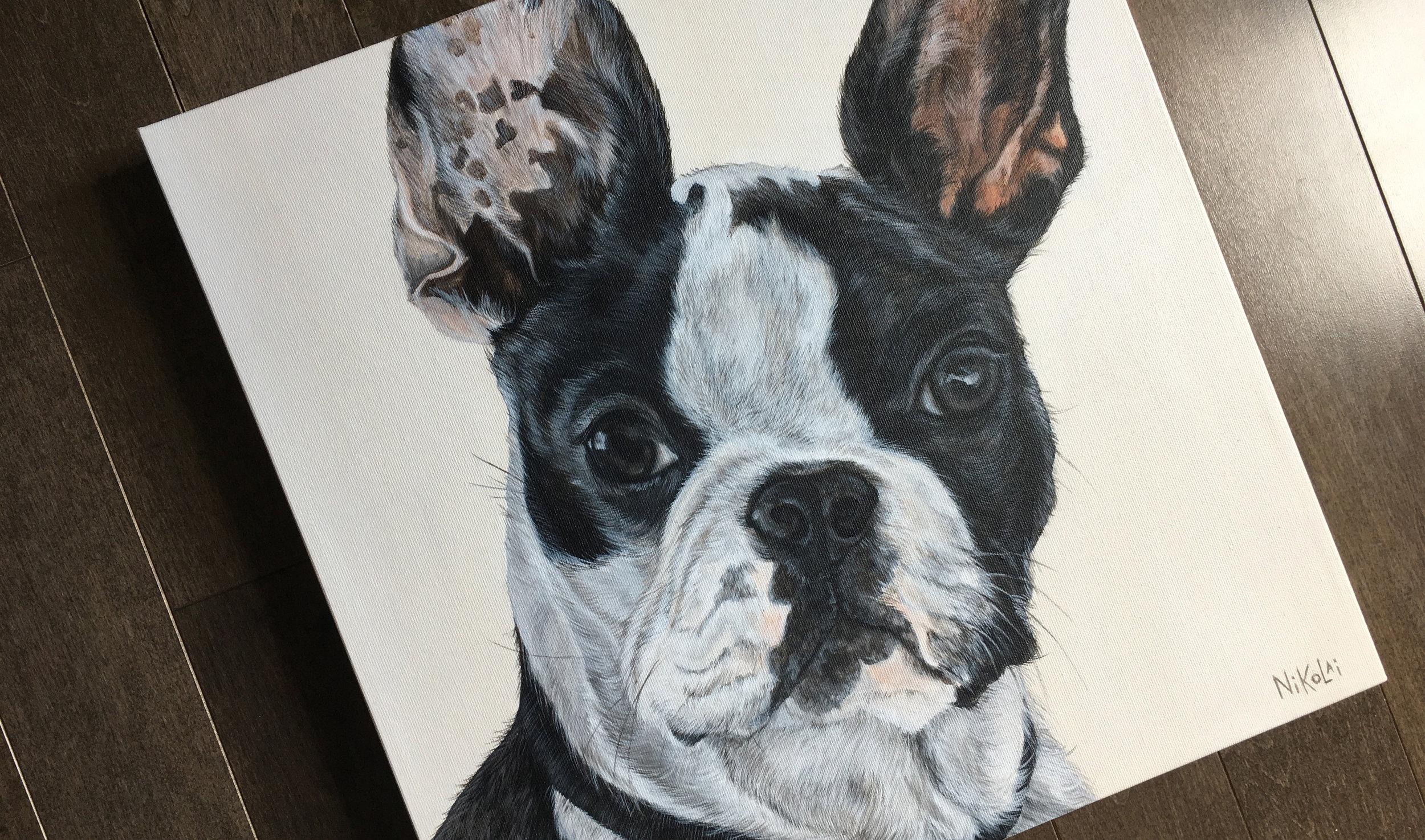 Yoda (Boston Terrier) Portrait Painting