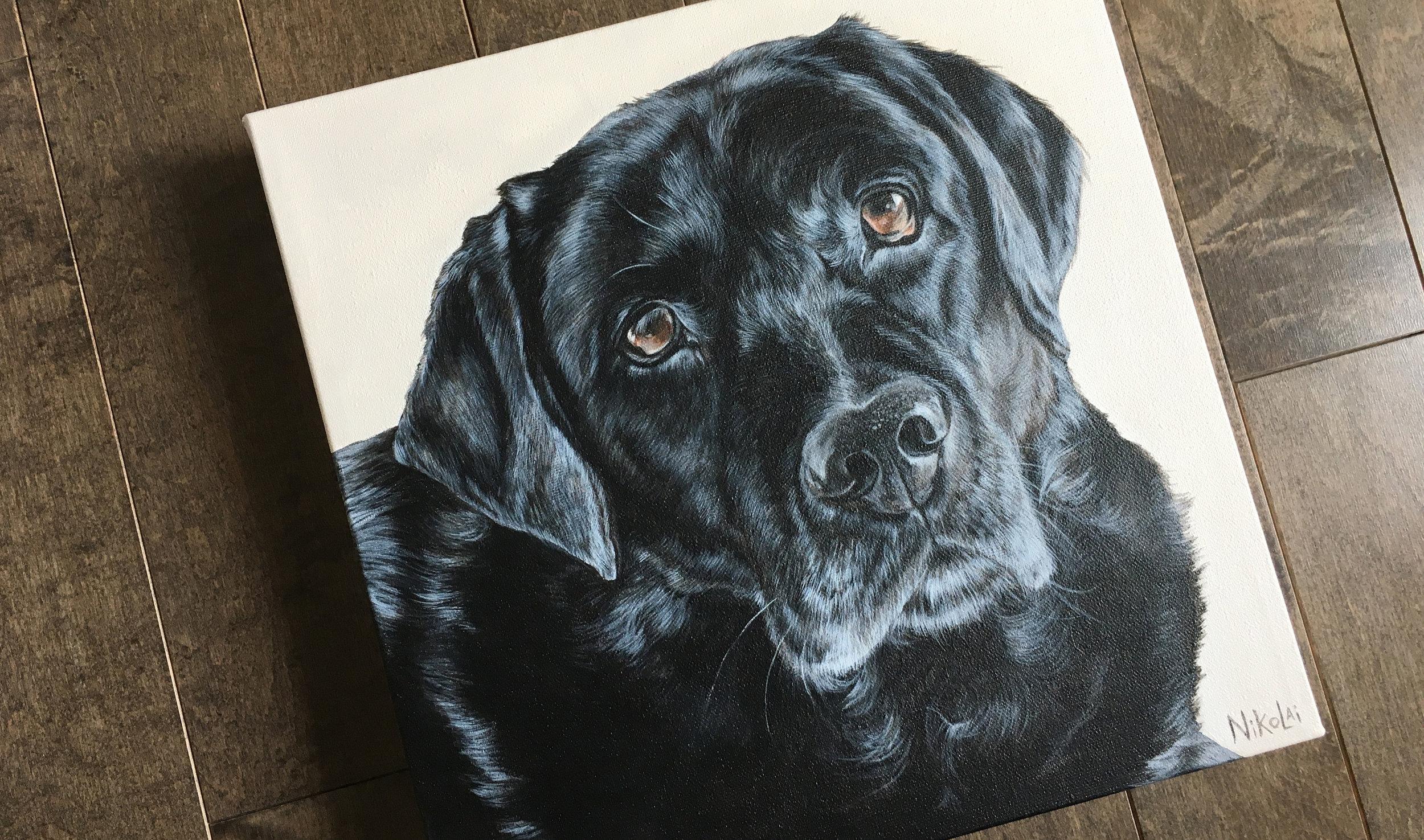 Hunter (Black Labrador Retriever)