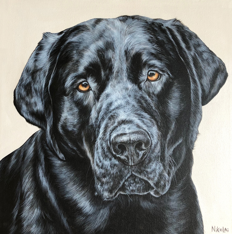 BENNY  | Acrylic on gallery style canvas, 16 x 16 | Ottawa, ON | SOLD